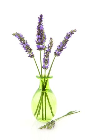 Lavender flowers in green glass vase isolated over white photo