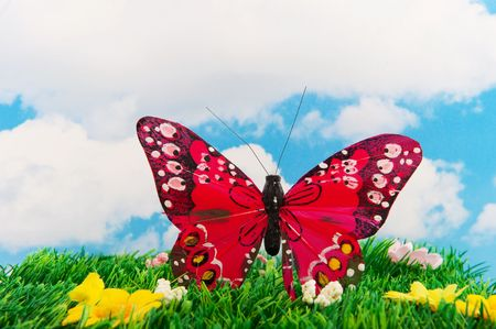 Butterfly in summer landscape with grass and blue sky Stock Photo - 6413358