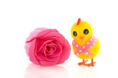 Funny easter chick with pink soap rose photo