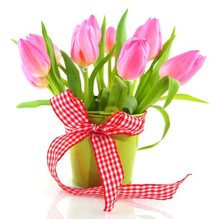 Cheerful pink tulips in green bucket with checkered ribbon Stock Photo