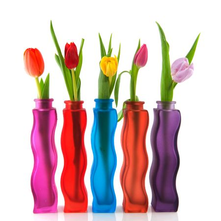 Colorful tulips in modern vases isolated over white photo