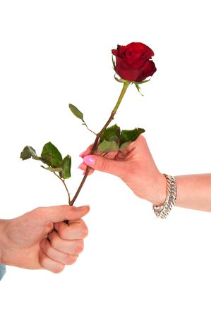 Man is giving a rose to a woman photo