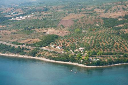Olive orchards at the peninsula Messinia from the Peloponnese Greece photo