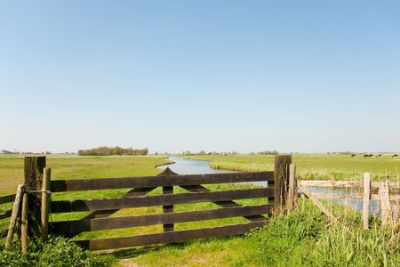 Dutch farmland with fence in the meadows photo