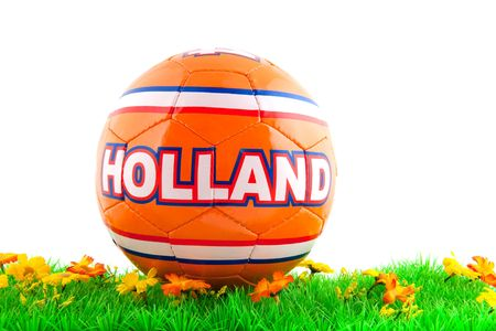 Dutch soccer ball for the world championship in grass photo