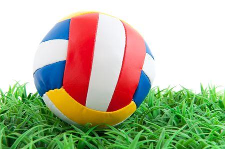 leather ball: bola de cuero colorido en la hierba verde Foto de archivo