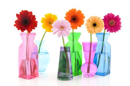 colorful Gerber in glass vases isolated over white photo