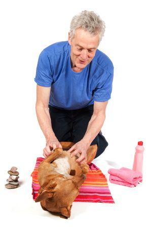 curare teneramente: Cane marrone � rilassante nel salone di bellezza de pur avendo trattamento Archivio Fotografico