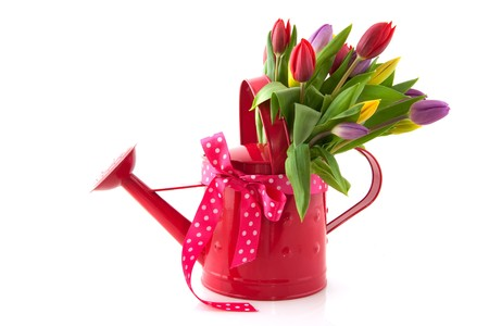 mixed flower bouquet: Decorative pink watering can with cheerful bouquet tulips
