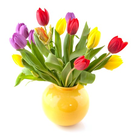 Colorful bouquet of tulips in yellow vase photo
