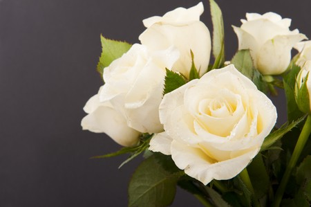 flower arrangements: Vase white roses for a funeral isolated on black