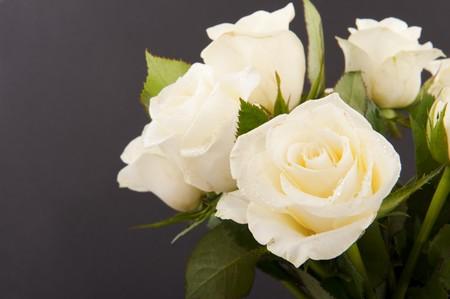 rosas negras: Vaso de rosas blancas para un funeral aislados en negro