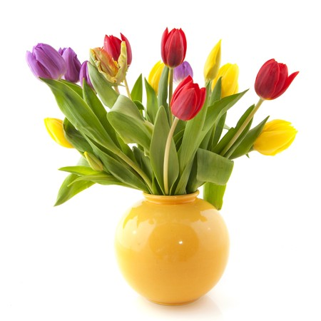 vase: Colorful bouquet tulips in yellow vase on white background