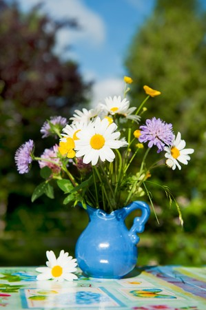 Wild flowers as daisies and clover in blue vase outdoor Stock Photo - 7306687