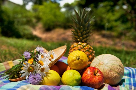 Fresh summer fruit outdoor in nature still life Stock Photo - 7306697