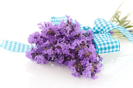 Bouquet of Lavender sprigs isolated over white Stock Photo - 7394929