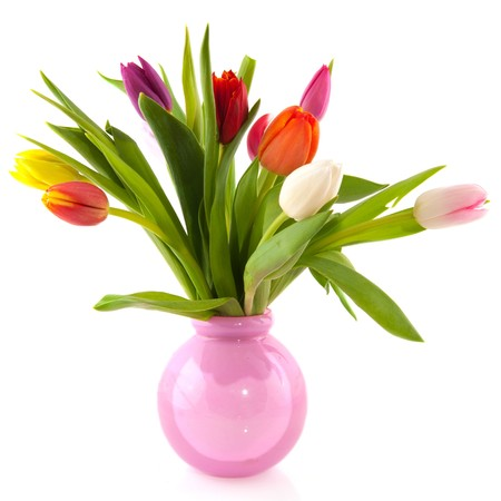 colorful bouquet of Dutch tulips in pink glass vase