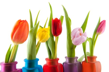 Row with colorful tulips in little glass vases photo