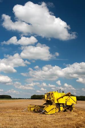 mechanization: Fields full of grain while harvesting in summer