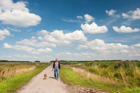 elderly man is walking the dog in nature landscape