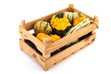 assortment squashes and pumpkins in wooden crate photo