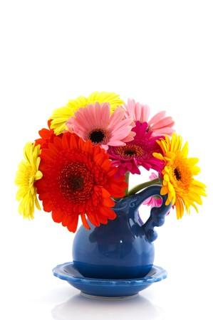 birthday flowers: Kleurrijke Gerber boeket in blauwe vaas op wit wordt geïsoleerd