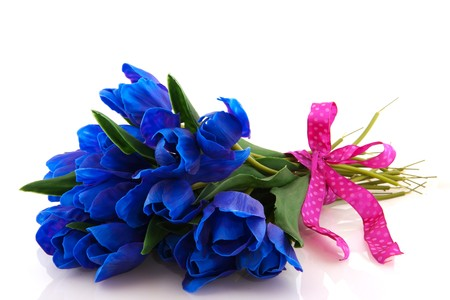 Tulips in weird blue color in cheerful bouquet photo
