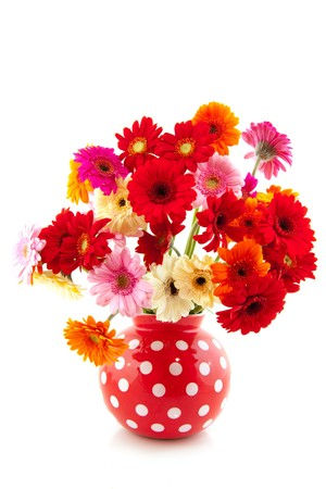 spotted flower: Cheerful Gerber flowers bouquet in dotted vase Stock Photo