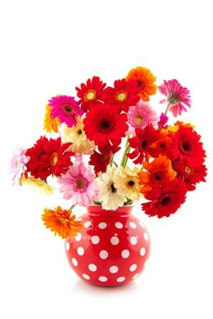 Cheerful Gerber flowers bouquet in dotted vase Zdjęcie Seryjne