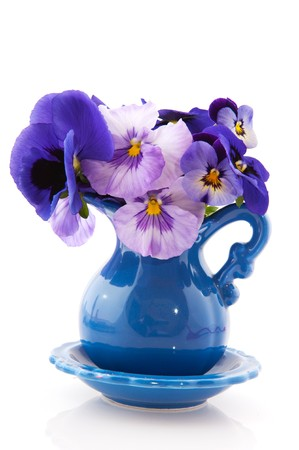 vase of flowers: blue little vase with pansy flowers on white background