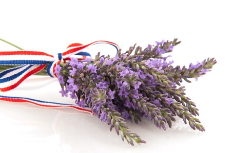 Bouquet French lavender with ribbon isolated over white photo