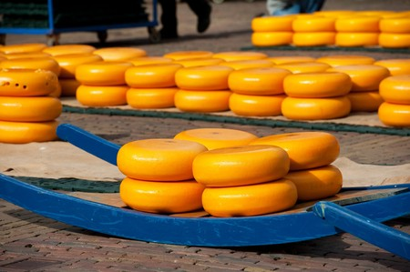 Many whole Dutch cheese at the market in Alkmaar Stock Photo