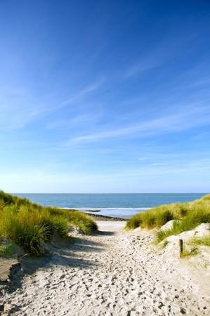 duna: Playa de dunas de arena y una ruta de acceso al mar