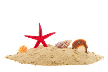 Beach with sand starfish and shells isolated over white Stock Photo - 7925305