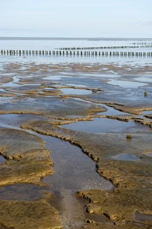 ebb: Mudflat podczas ebb w krajobrazie Holandii wody