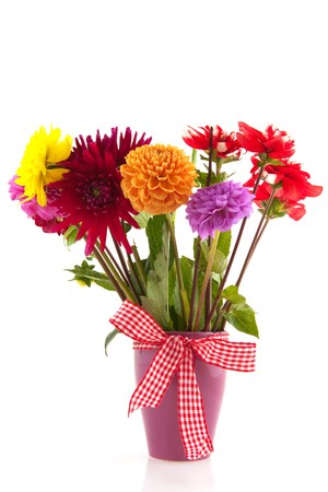 dalia: Ramo de flores de Dalia aislados en tela a cuadros