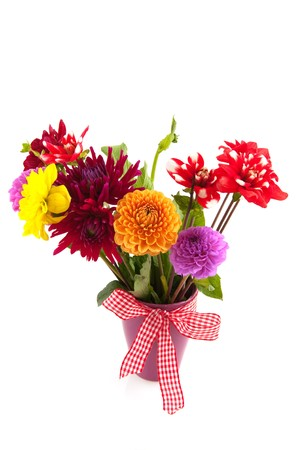 Bouquet of Dahlia flowers isolated on checkered cloth Stock Photo - 7933610