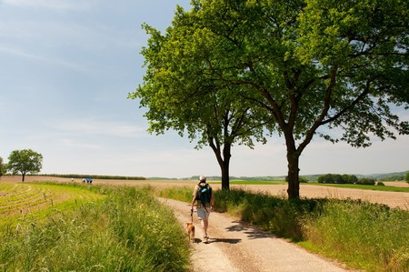 Dutch landscape with man and dog in Limburg with hills and horizon photo