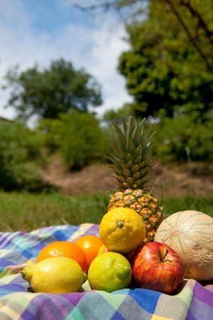 Still life with various summer fruit outdoor  Stock Photo - 7973580