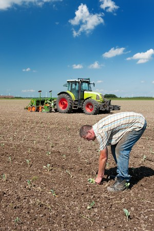 Farmer is working outdoor in the agriculture fields