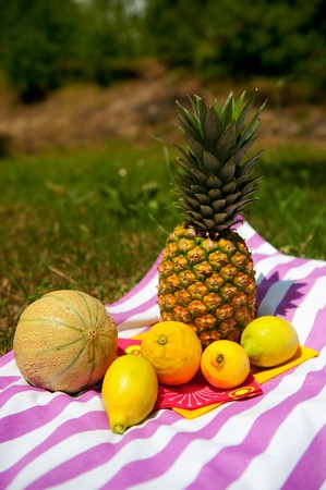 Still life with vaus summer fruit on striped table cloth Stock Photo - 8056247