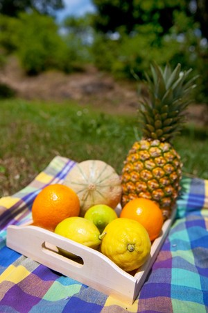 Still life with vaus summer fruit on wooden tray Stock Photo - 8056420