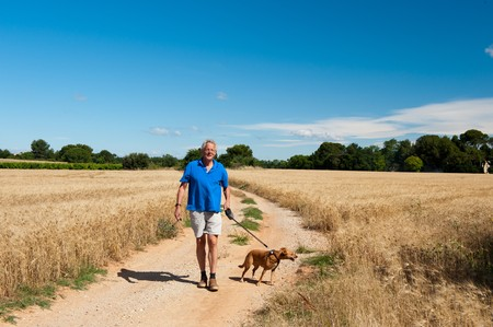 Elderly man is walking the dog in free nature
