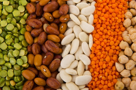 sorted: Various sorted dry Legumes in different colors