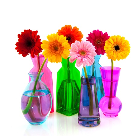 Row colorful Gerber flowers in little vases photo