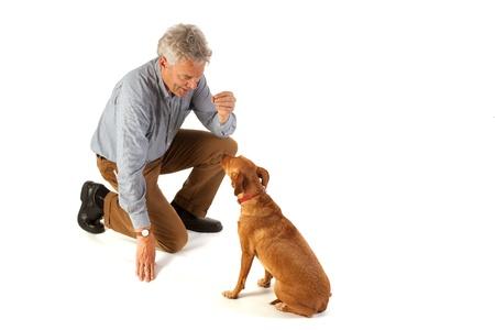obedience: el hombre es obediencia de formaci�n de perro