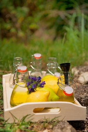 countrified: Making fruit lemonade with lemon in little bottles