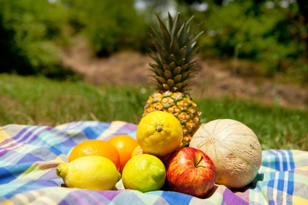 Still life with various summer fruit outdoor Stock Photo - 8677637