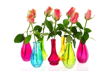 Colorful glass vases with pink roses isolated over white background Stock Photo - 8792878