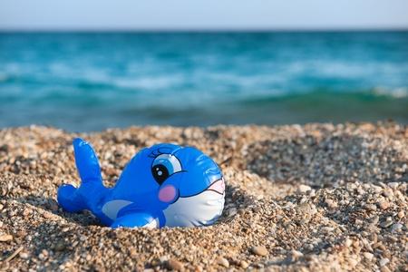 fish toy: